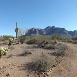 Nature Walk at Superstition Mountain - Lost Dutchman Museum - View along the Trail